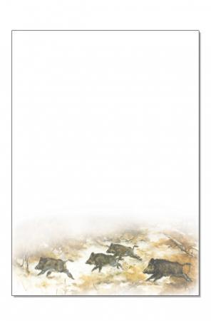 Brief- und Computerpapier ''Sauen''