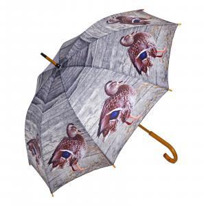 Regenschirm Enten